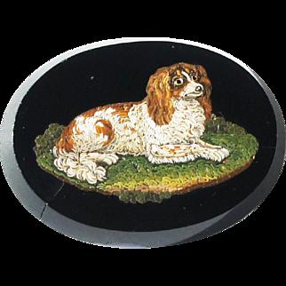 Victorian Italian Micro Mosaic Panel Jewel King Charles Spaniel a/f
