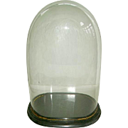 Antique Victorian Oval Glass Dome: Parlour Dome: Wedding Dome: Taxidermy:Flowers