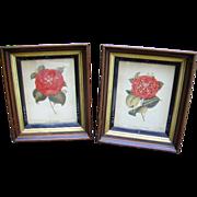 Antique Victorian Eastlake Picture Frames Pair Botanical Prints