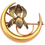 Antique Art Nouveau 10k Enamel Crescent Moon & Enamel Orchid or Iris Pin with Tiny Baroque Pearl
