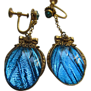 Vintage 20s Czech Morpho Butterfly Wing Art Glass Earrings