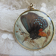 Antique Butterfly Locket in Gold Fill