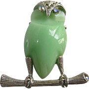 Vintage Signed Hattie Carnegie Thermoplastic Green Celedon Owl Pin  Rhinestones