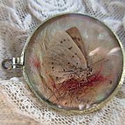 Circa 1900 Butterfly Locket Pendant , Crystal Locket