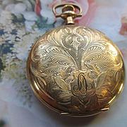 Antique Elgin Gold Fill Pocket Watch TLC