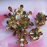 Vintage DeMario Pin & Clip On Earrings