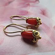 Vintage 14k Coral Pierced Earrings