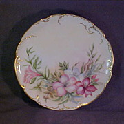 Haviland & Company Hand Painted Limoges Plate