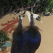 Sterling Silver and Feather Earrings