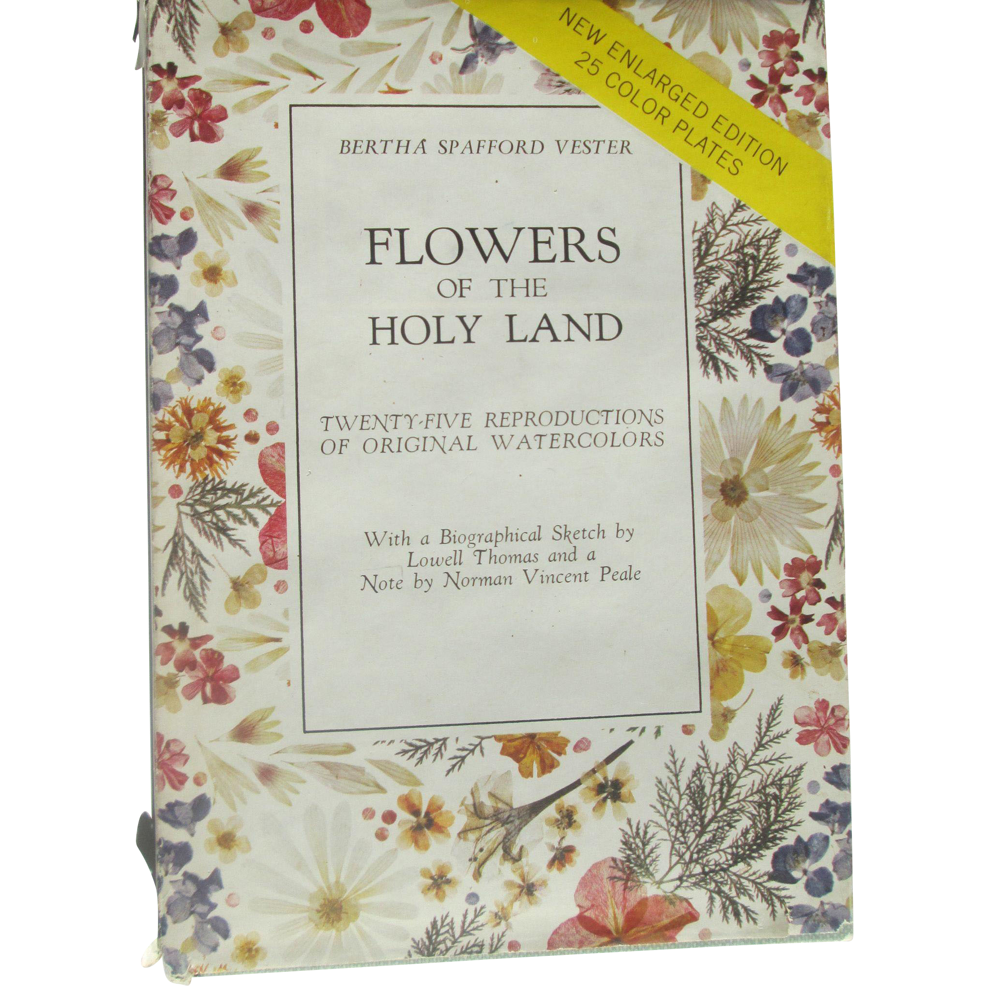 Flowers of the Holy Land, Enlarged Edition, Book by Bertha Spafford Vester
