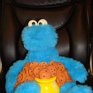 Talking Cookie Monster By Ideal
