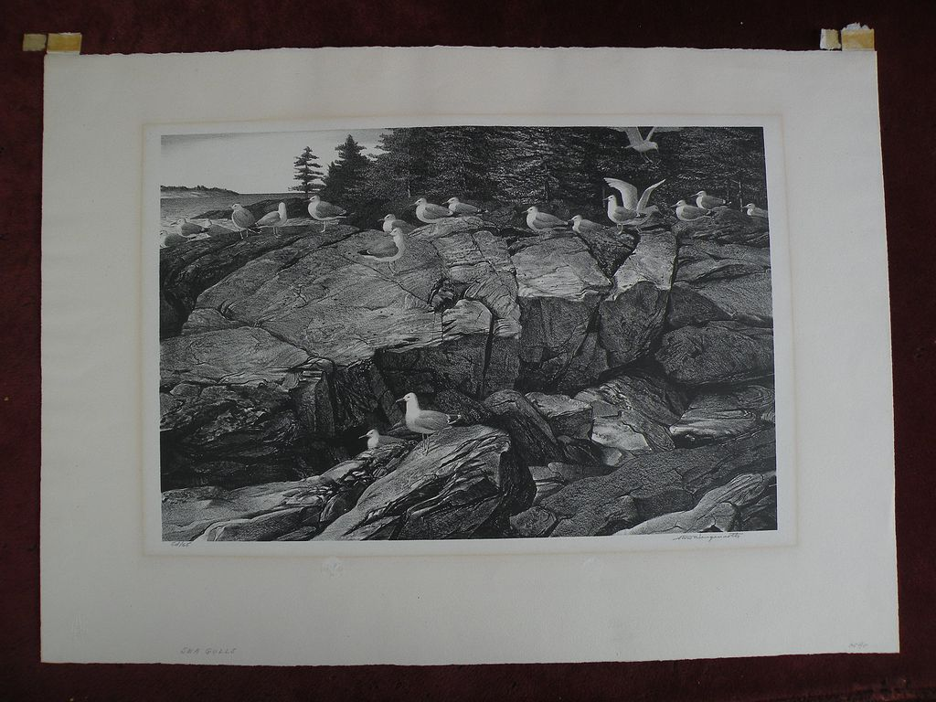 "STOW WENGENROTH (1905-1978) American printmaking pencil signed limited edition lithograph ""Sea Gulls"""