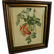 Fine watercolor painting of roses signed and dated 1919