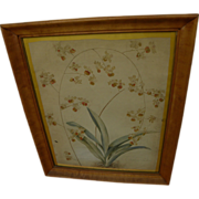 Original English botanical drawing signed T. Allport and dated April 1834