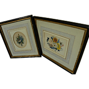 PAIR Original Victorian era botanical watercolor paintings