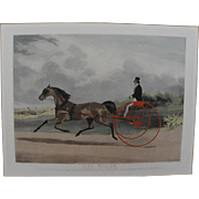 Sporting art hand colored mid 19th century antique English aquatint print of famous horse Lord William and sulky after William J. Shayer painting