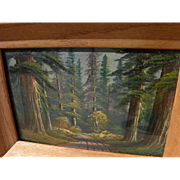 California art painting of sequoia or redwood forest