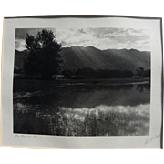STEPHEN H. WILLARD (1894-1966) black and photograph of meadow landscape by noted California artist and photographer