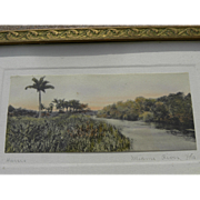 "Floridiana very early ""Miami River"" colored photograph by well known Saint Augustine photographer W. J. Harris"