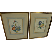 Mid 19th century botanical still life watercolor paintings **PAIR**