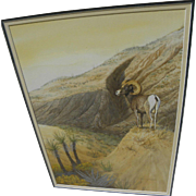 Wildlife art fine contemporary watercolor of desert bighorn sheep by artist Bill Roach