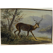 NEWTON SMITH FIELDING (1799-1856) English early watercolor drawing of a stag