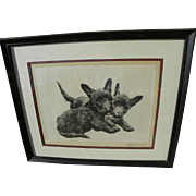 KURT MEYER-EBERHARDT (1895-1977) pencil signed etching of Scottish Terrier dogs by German animal art master