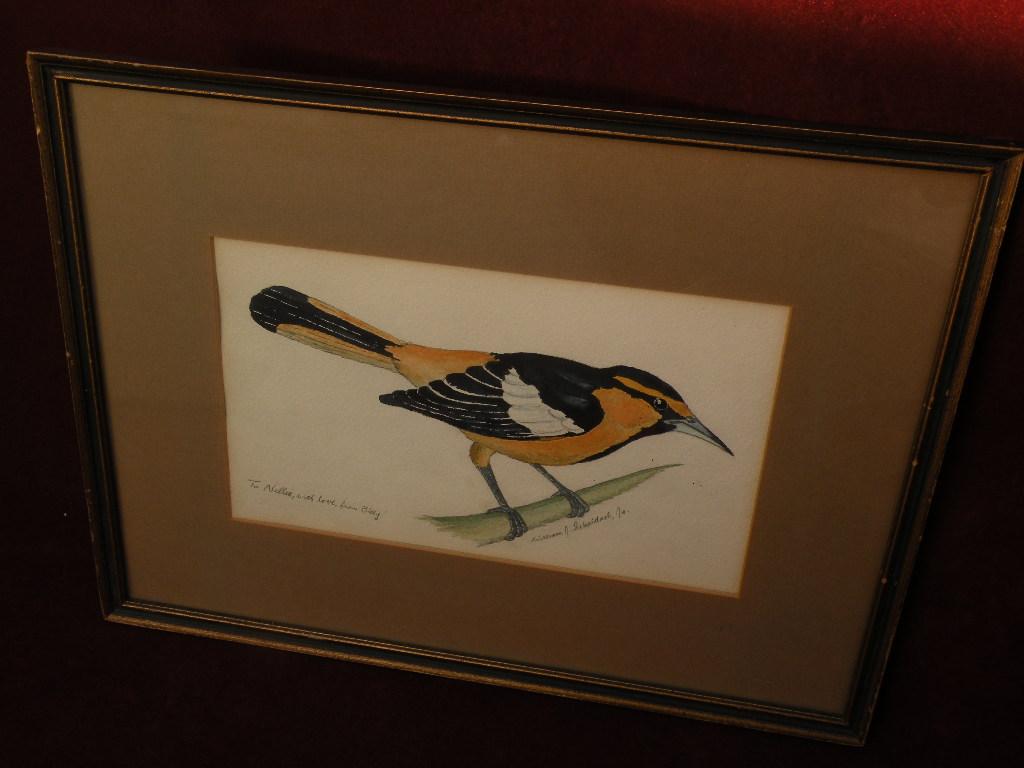 WILLIAM JOSEPH SCHALDACH (1896-1982) American well listed wildlife art watercolor of bird