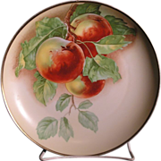 Beautiful Antique LR Bavaria hand paint plate with peach on branch design