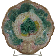 Outstanding Large American Majolica Maple Leaf Dish