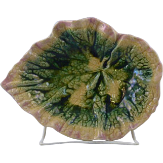 Antique Griffen, Smith & Hill, Etruscan Majolica Begonia leaf dish.