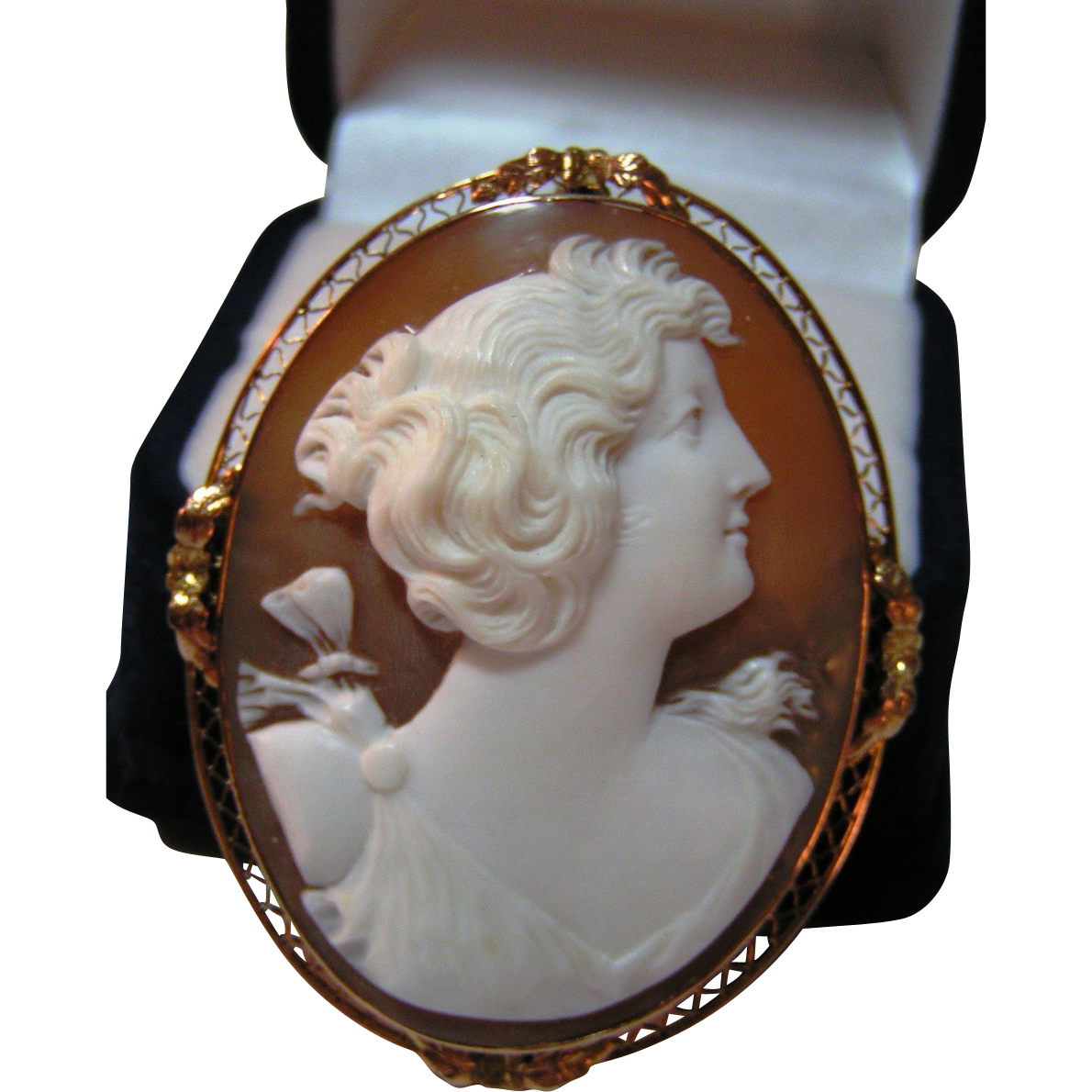 Beautifully Carved High Relief Shell Cameo 10K Pin / Pendant
