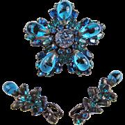 Rare and Amazing Regency Brooch & Earrings