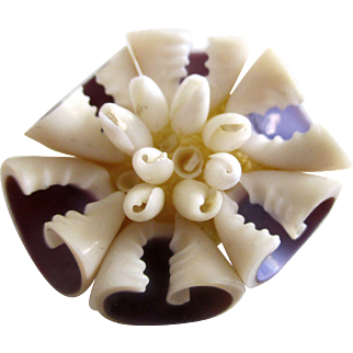 Shell pin vintage: gorgeous purple color insides: six shells joined in a circle