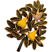 Cardoro Christmas pin: green enameled leaves edged in gold: two yellow pears: partridge rhinestones: 60s: hallmarked Cardodo