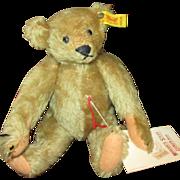 Adorable Small Steiff Bear
