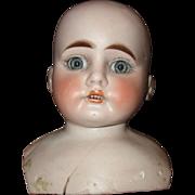 Darling doll head