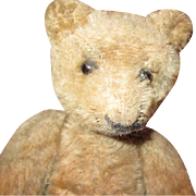 Adorable antiquenohair Teddy bear