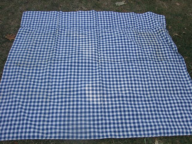 Antique Blue Checked Mattress Cover for Old Rope Bed Mint!