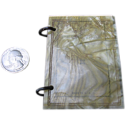 Miniature 1929 Celluloid Covered Diary for Doll