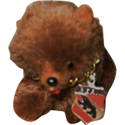 Miniature Bear from Bern Switzerland for Dolly to Hold