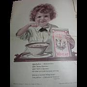 1920s Needlecraft Magazine for Ladies