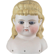 Alice in Wonderland German Bisque Glass Eyes Long Hair Gorgeous