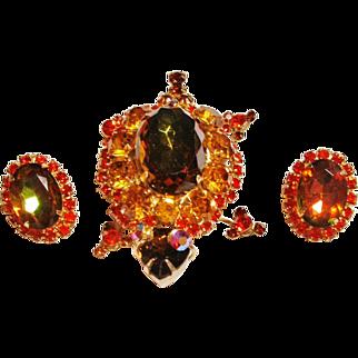 Verified D&E Juliana Brown & Orange Turtle Brooch & Earrings
