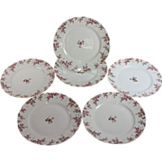 Set of Six Vintage Limoges Pink Roses dinner plates 9 3/4""