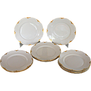12 Hutschenreuther Selb White and Gold Service Plates
