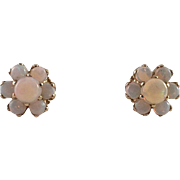 14K Yellow Gold Opal Pierced Earrings