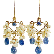 Tanzanite Opal Cluster Chandelier Earrings - Laudine Earrings