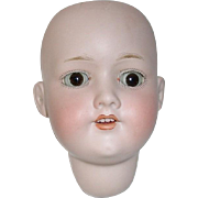 German Bisque Doll HEAD Only ~ AM 390 Armand Marseille