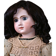 """Gorgeous Antique 16"""" French Jumeau Human Hair Wig in Dark Chocolate Brown w/Lovely Banana Curls"""